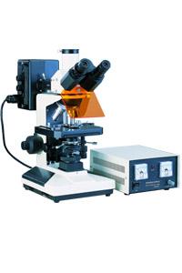 Microscopio trinocular Labklass L2001B para epifluorescencia