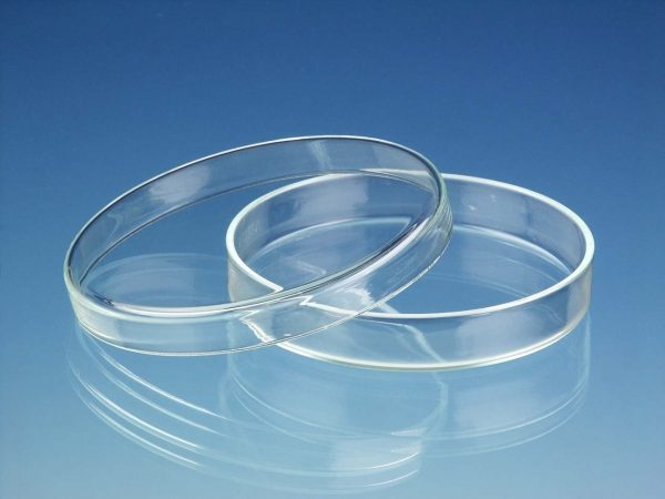 Caja de Petri de vidrio 60x15 mm Origen China